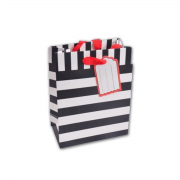 Black and white stripe bag